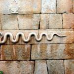 ಚಿತ್ರದುರ್ಗದ ಏಳು ಸುತ್ತಿನ ಕಲ್ಲಿನ ಕೋಟೆ