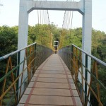 Cable Bridge Sahasralinga